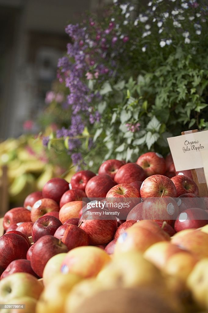 Organic apples : Stock Photo