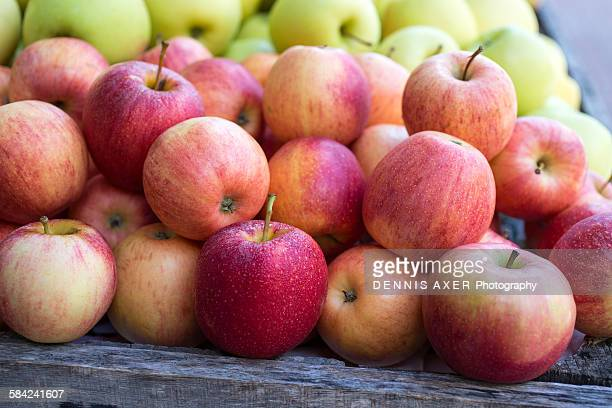 Organic Apples with droplets at Fruit Stand