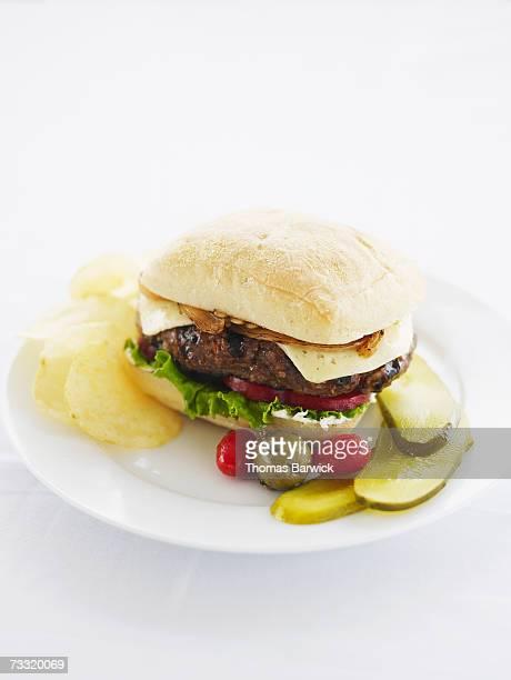 Organic bison burger