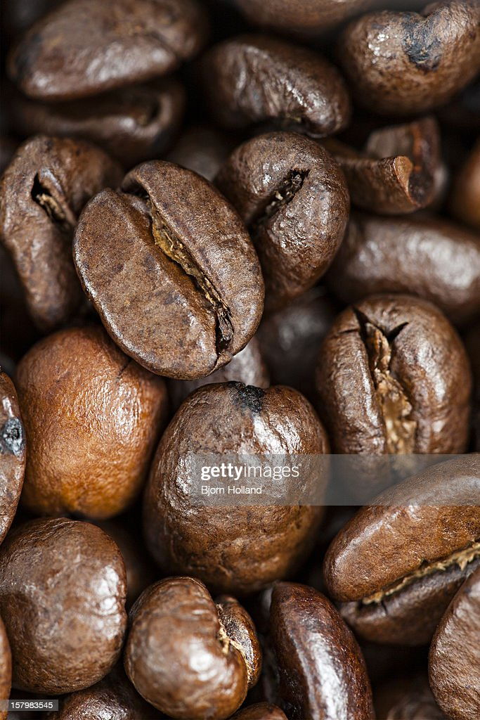 Organic coffee beans : Stock Photo