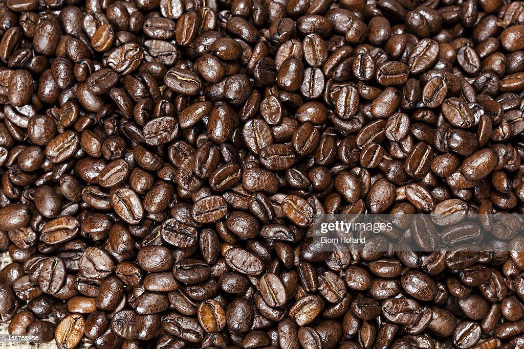 Organic coffee beans : Stock Photo