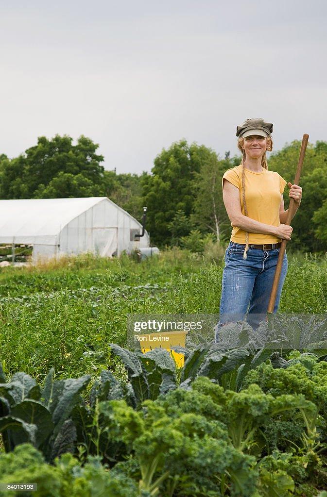 Organic Farm worker amongst a field of produce : Stock Photo