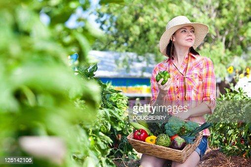 Organic Farmer : Stock Photo