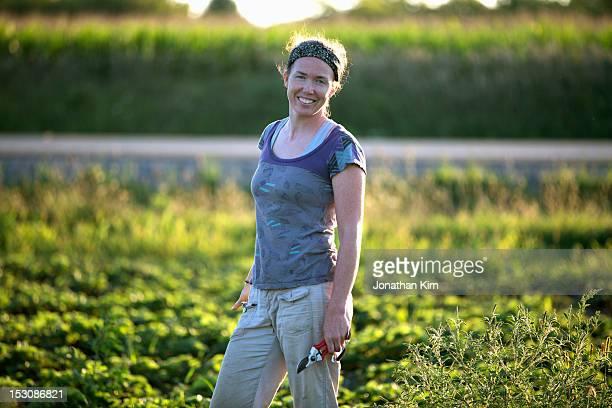 Organic farmer trims plants in a field.