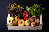Organic food concept assortment vegetables in wood crate potatoes, Delicata Squash, yellow turnip, radish, red salad, parsley on black background