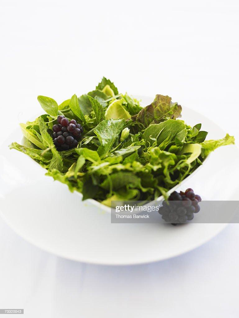 Organic mixed green salad : Stock Photo