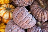 Organic pumpkins at fruit stand
