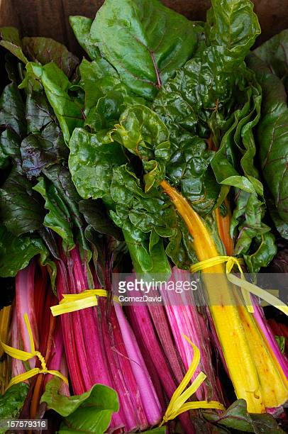 Organic Rainbow Chard Ready for Shipping