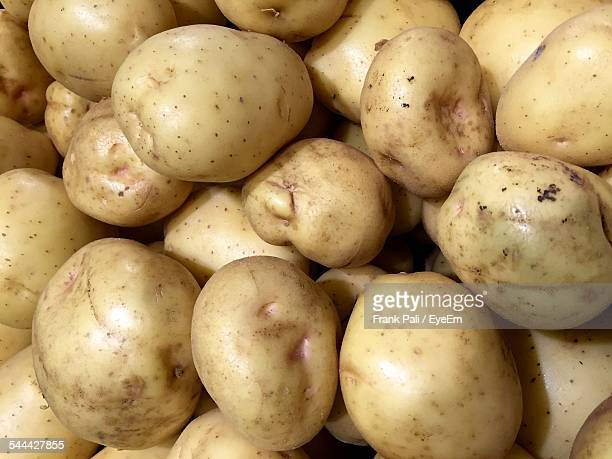 Organic Raw Potatoes