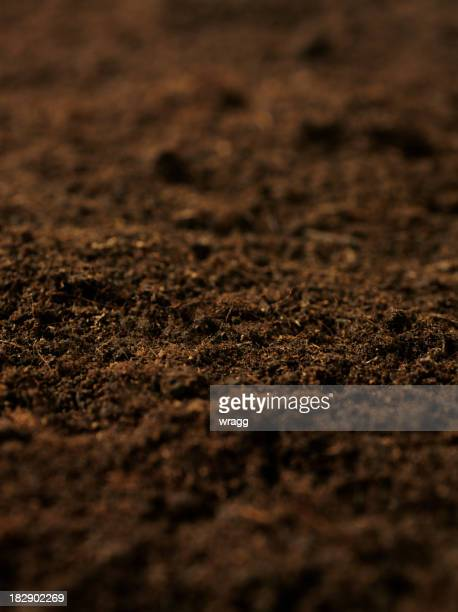 Soil stock photos and pictures getty images for Organic soil uk
