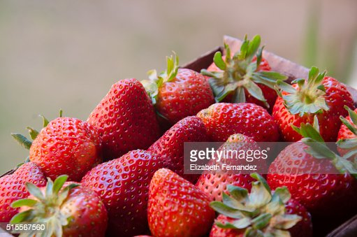 Organic strawberries : Stock Photo