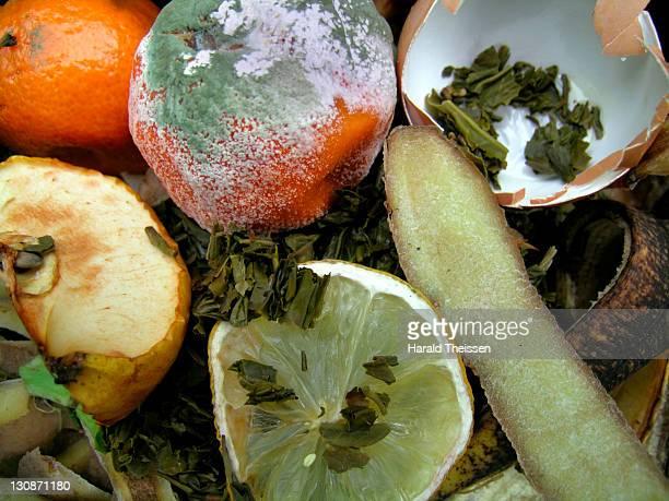 Organic waste, kitchen rubbish