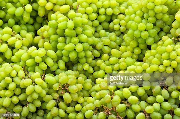Organic White Grapes