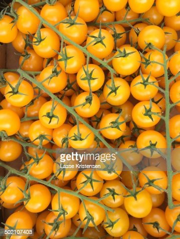 Organic Yellow Tomatoes