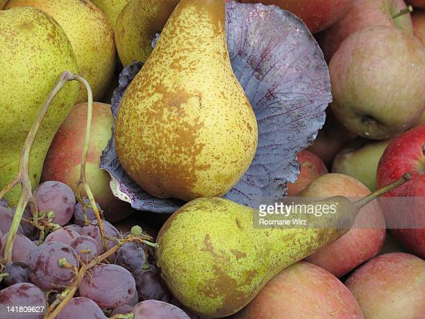 Organically grown autumn fruit
