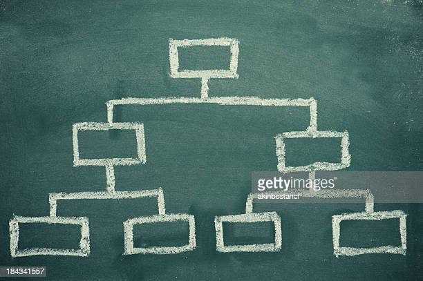 organization chart on a blackboard