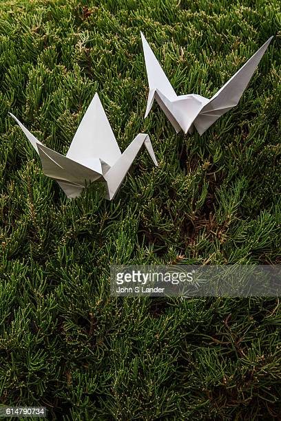 Origami Crane Couple Origami is the Japanese word for paper folding Ori means fold and gami means paper It is the art of paper folding that has been...