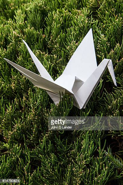 Origami Crane Origami is the Japanese word for paper folding Ori means fold and gami means paper It is the art of paper folding that has been handed...