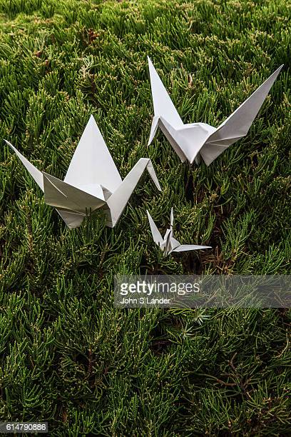 Origami Crane Parents and Baby Origami is the Japanese word for paper folding Ori means fold and gami means paper It is the art of paper folding that...