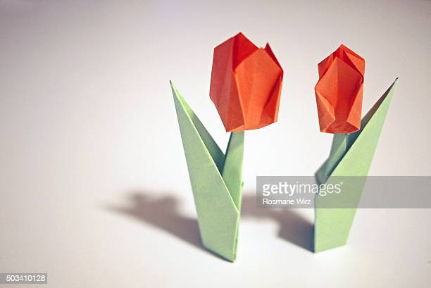 Origami paper tulips casting shadows