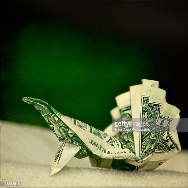 Origami peacock folded with one dollar bill