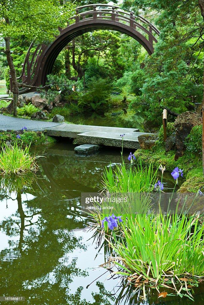 "Originally created as a ""Japanese Village"" exhibit for the 1894 California Midwinter International Exposition the Japanese Tea Garden at Golden Gate..."