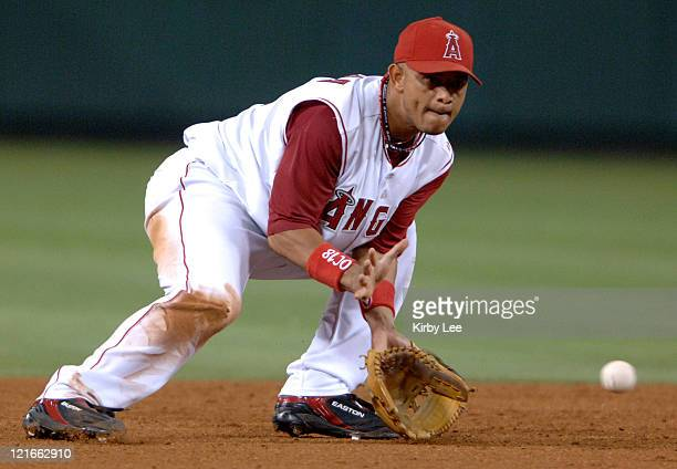 Orlando Cabrera of the Los Angeles Angels of Anaheim fields a ground ball during 92 victory over the Tampa Bay Devil Rays at Angel Stadium in Anahiem...