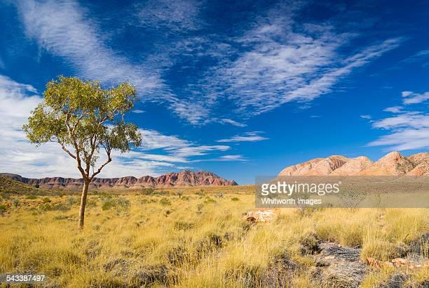 Ormiston Pound Macdonnell Ranges central Australia
