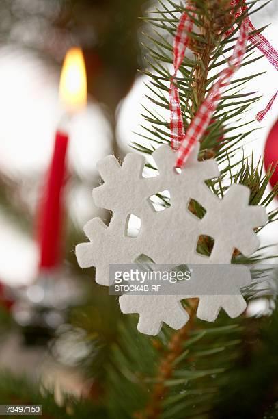 Ornament on Christmas tree