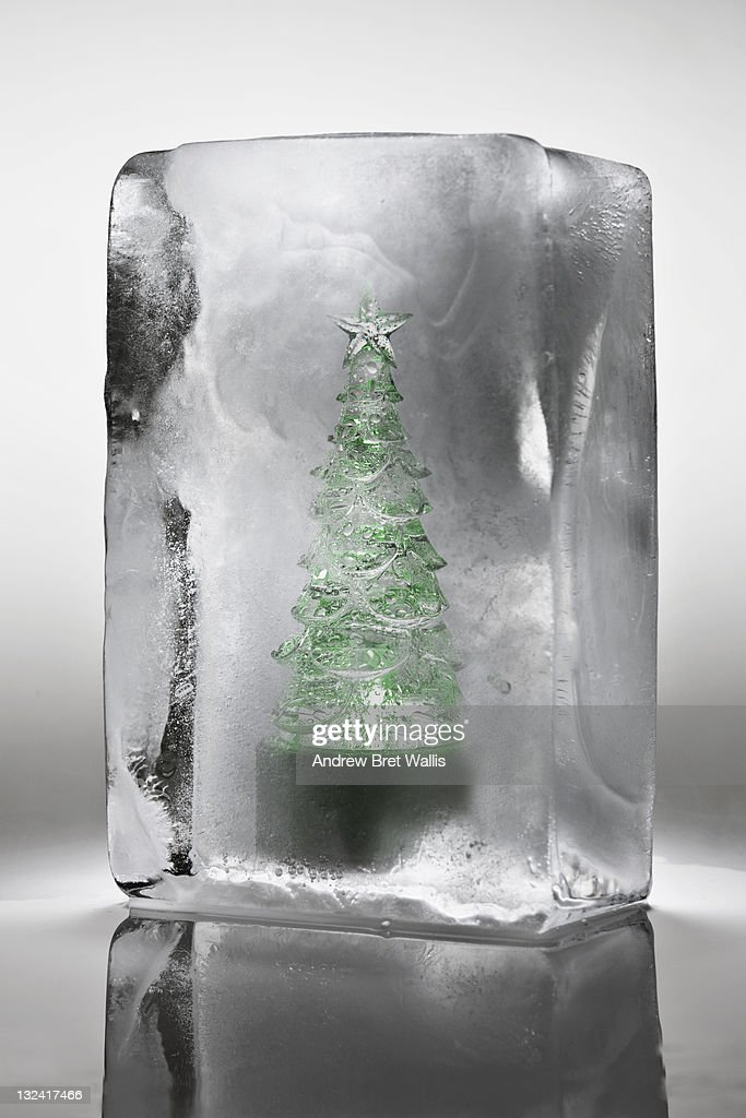 Ornamental Christmas tree frozen in a block of ice : Stock Photo