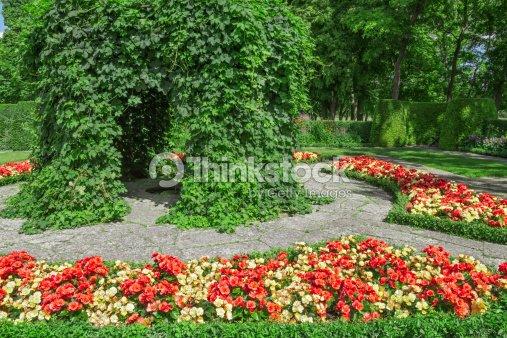 jardin mod le avec fleur begonias photo thinkstock