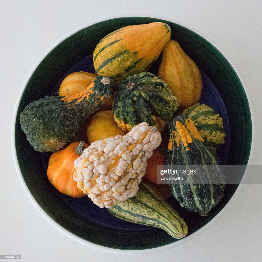 Ornamental Gourds in navy blue round bowl : Stock Photo