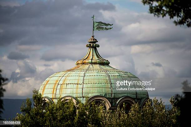 Ornate dome over tree tops