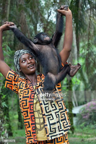 Orphan baby Bonobo (Pan paniscus) with surrogate mother. Sanctuary Lola Ya Bonobo Chimpanzee, Democratic Republic of the Congo