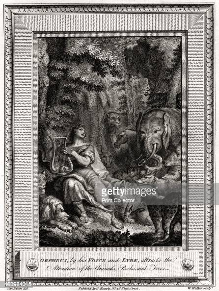 Orpheus Stock Photos and Pictures | Getty Images