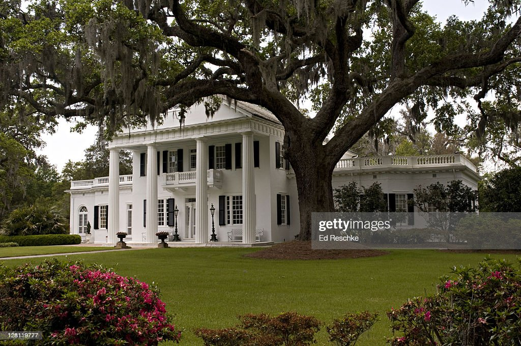 Orton House and Gardens with large live Oak Tree, Orton Plantation, Winnabow, near Wilmington, North Carolina, USA. Southern antebellum architecture.