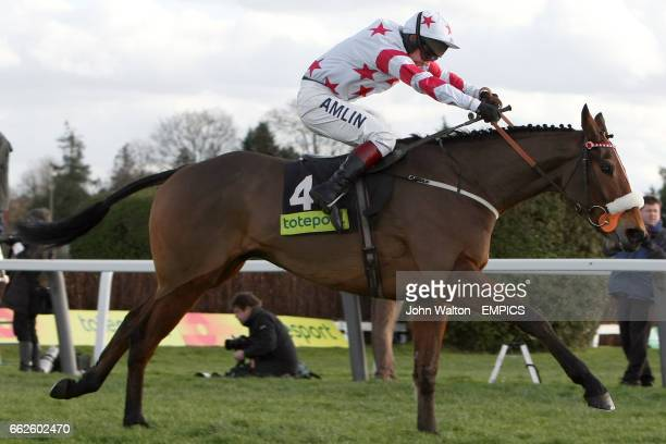 Osako D'Airy ridden by Richard Johnson during The totepool Contenders Hurdle Race