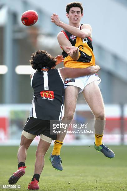 Oscar Clavarino of the Dandenong Stingrays handballs during the TAC Cup round 16 match between the Greater Western Victoria Rebels and the Dandenong...