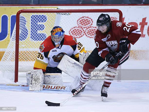 Oscar Dansk of the Erie Otters watches for a shot from Justin Auger of the Guelph Storm in Game Two of the OHL Western Conference Final at the...