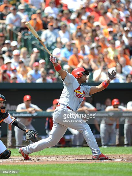 Oscar Taveras of the St Louis Cardinals bats during the game against the Baltimore Orioles at Oriole Park at Camden Yards on August 10 2014 in...
