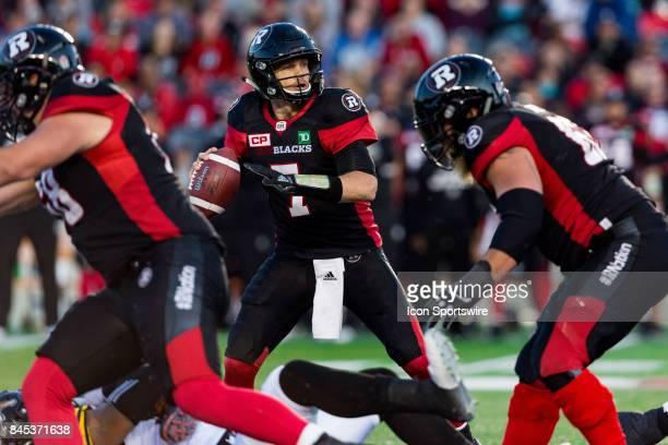 Ottawa RedBlacks quarterback Trevor Harris looks for an open receiver during Canadian Football League action between Hamilton TigerCats and Ottawa...