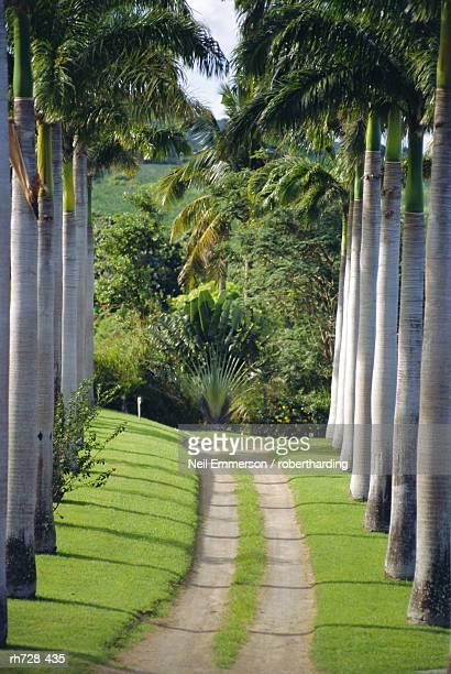 Ottleys Plantation, Nevis
