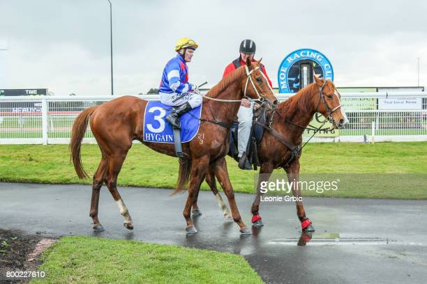 Our Foxwedge ridden by Brian Werner returns after winning the First National Real Estate 3YO Maiden Plate at Moe Racecourse on June 24 2017 in Moe...