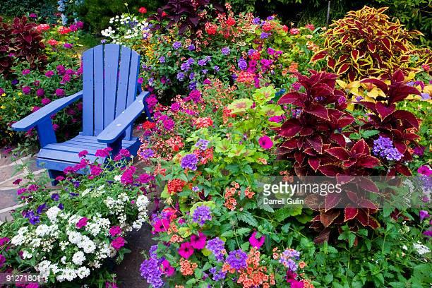 Botanischer Garten Stock-Fotos und Bilder | Getty Images