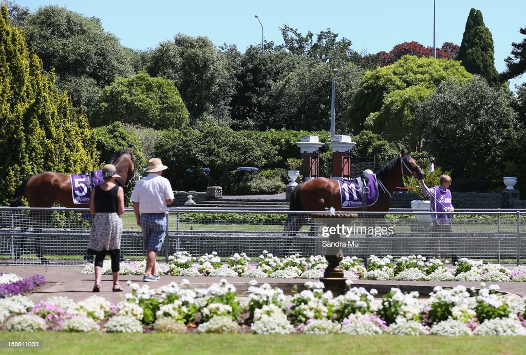 Our Kingpin (L) and Solar Eclipse are lead out to the track before The Sound Championship Stakes at Ellerslie Racecourse on January 1, 2013 in Auckland, New Zealand.