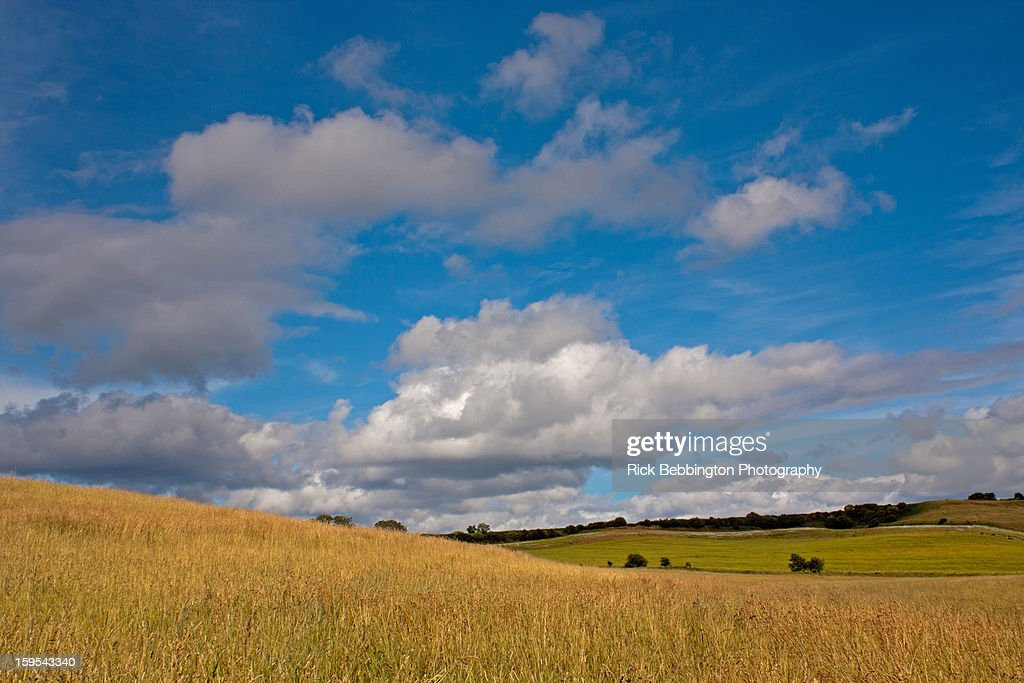 Out in the Countryside : Stock Photo