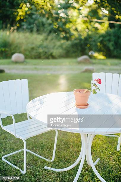 Outdoor chairs in garden
