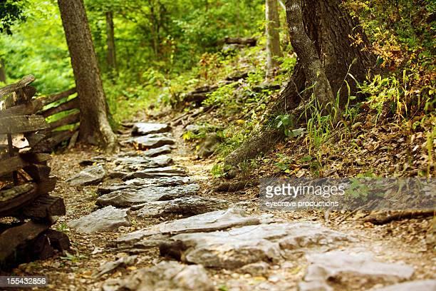 outdoor nature hiking trail