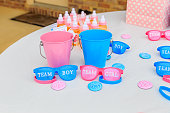 Pink and blue, girl or boy, outdoor gender reveal party decoration and party favorites.