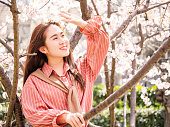 Outdoor portrait of beautiful young Chinese girl in red shirt smiling among blossom cherry tree brunch in spring garden, beauty, summer, emotion, expression and people concept.
